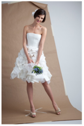 Angel Sanchez wedding short dress.PNG