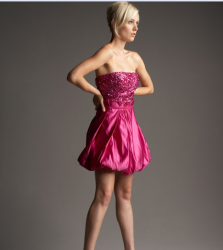 Mark and James  Beaded-Bust Bubble Dress in bright pink.PNG
