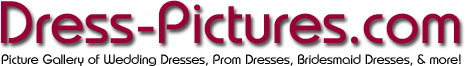 Dress-Pictures.com Logo